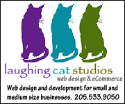 Laughing Cat Studios Web Design