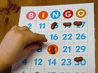 lake hartwell bingo