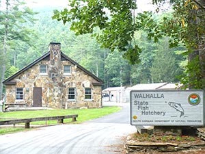 walhalla fish hatchery